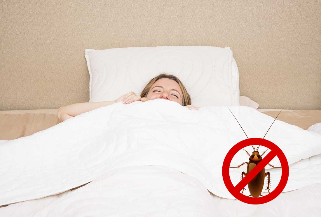 Keep Roaches Away in Bedroom