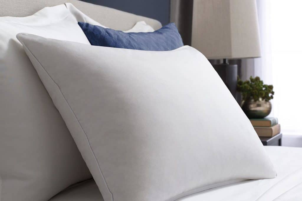 Pacific Coast Pillows Reviews
