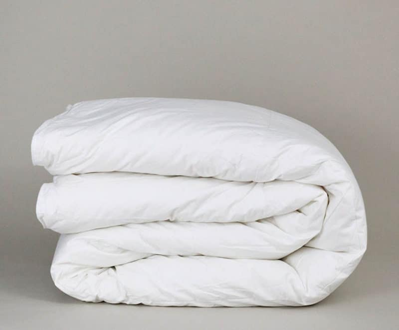 Down Etc.® Winter Weight Down Comforter